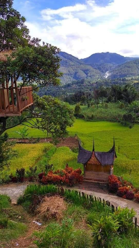 pesona jorong tabek Nagari Talang Babungo Kecamatan Hiliran Gumanti